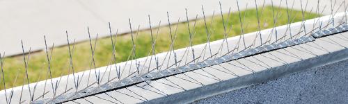 Usluge visinski radovi - ugradnja zaštita od ptica